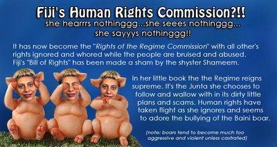 human-rights-sham-opti.jpg